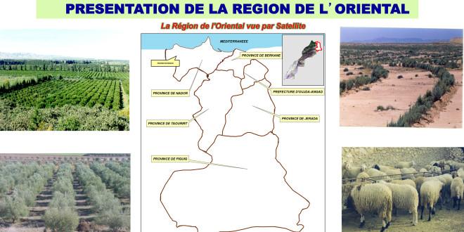 Presentation de la region de l'oriental
