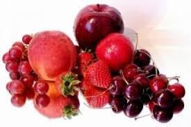 """الجمعية المغربية لمنتجي الفواكه الحمراء في """"الأسبوع الأخضر"""" ببرلين"""