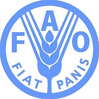 المؤتمر الدولي الثاني حول الأغذية بالعاصمة الإيطالية من 19 إلى 21 نونبر الجاري
