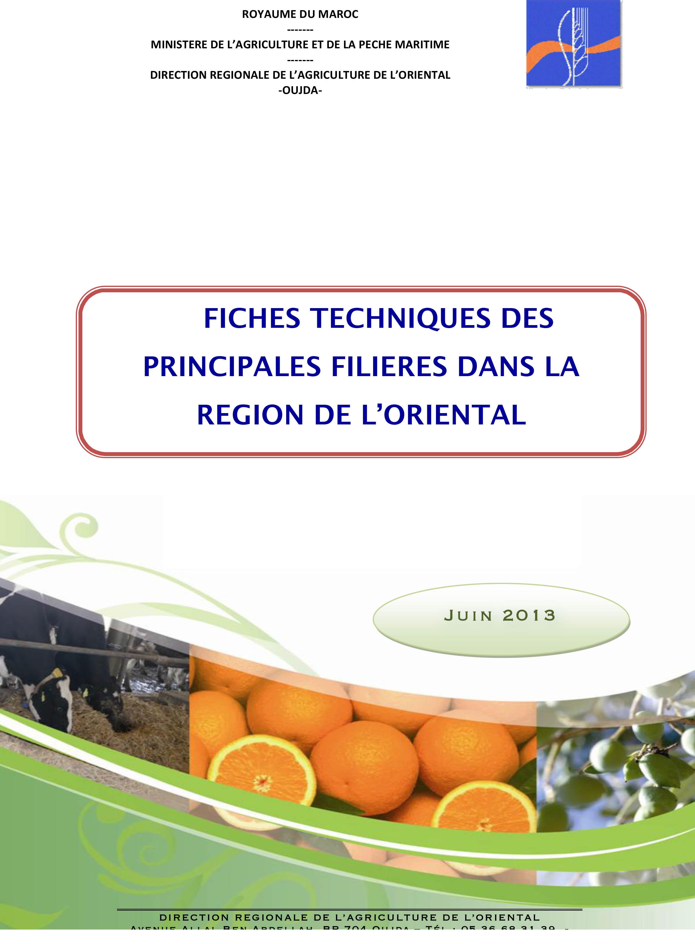 FICHES TECHNIQUES DES PRINCIPALES FILIERES DANS LA REGION DE L'ORIENTAL