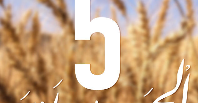 مكافحة الأمراض الفطرية و الأعشاب الضارة بمحاصيل الحبوب ( الجزء 3 )