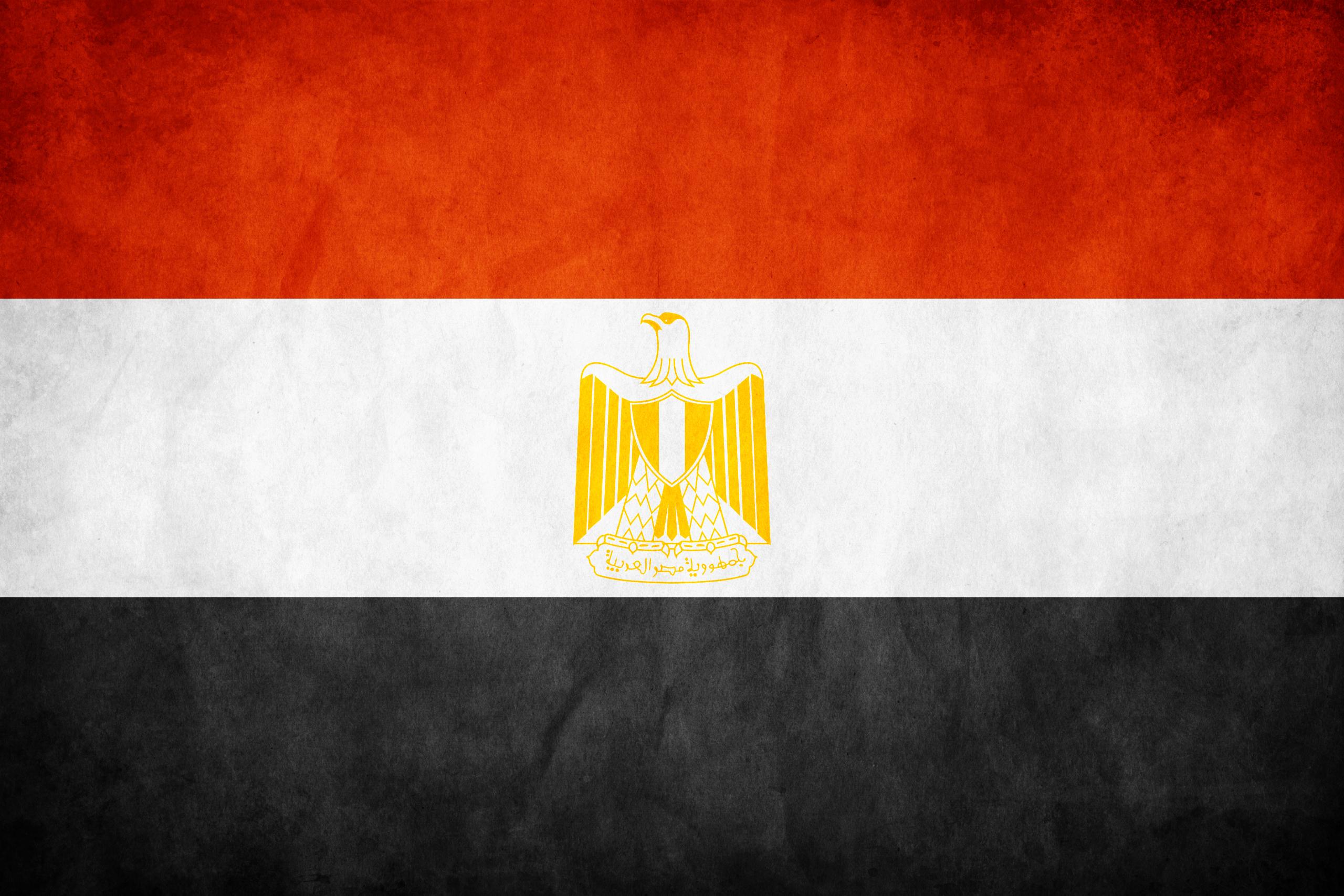مصر تتوقع إنتاج 7,8 مليون طن من القمح خلال العام الحالي