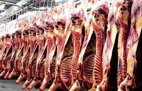 تساهم جهة تادلة أزيلال  ب42 ألف طن من اللحوم الحمراء سنويا
