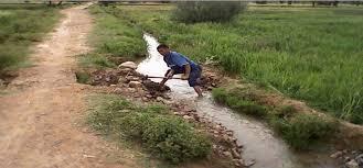 تثمين الموارد المائية بالمناطق الجافة وشبه الجافة