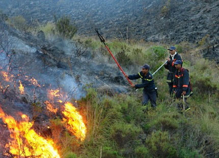 إخماد حريق بضواحي تطوان أتى على أزيد من 17 هكتارا من الغطاء الغابوي