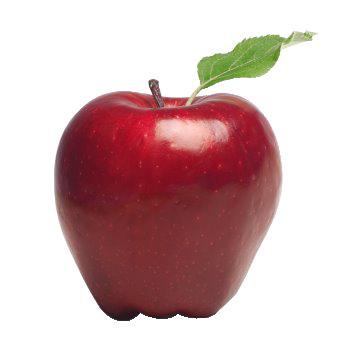 تسويق وتثمين سلسلة التفاح