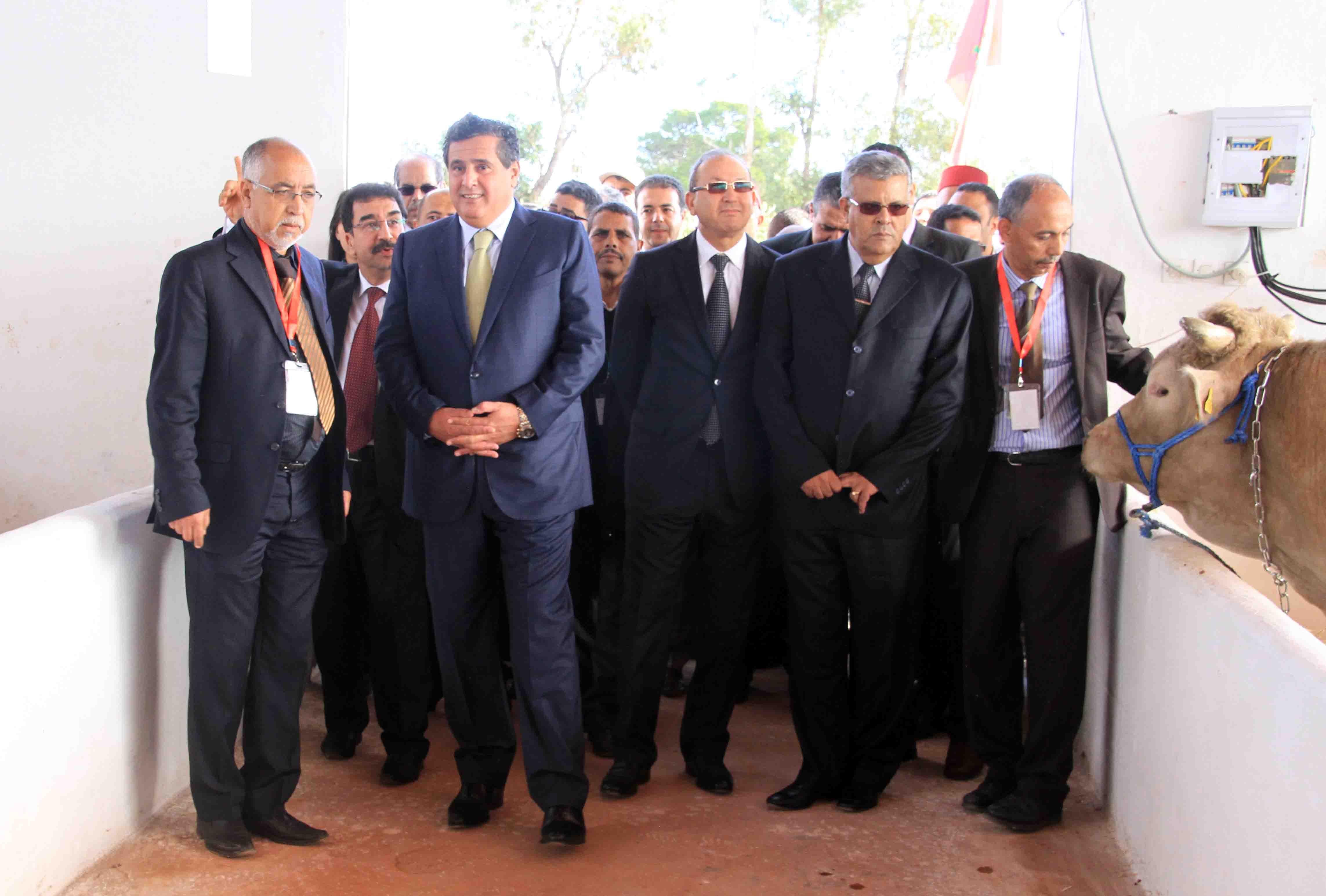 زيارة وزير الفلاحة و الصيد البحري السيد عزيز أخنوش للمعرض الوطني المهني لتنمية تربية الماشية