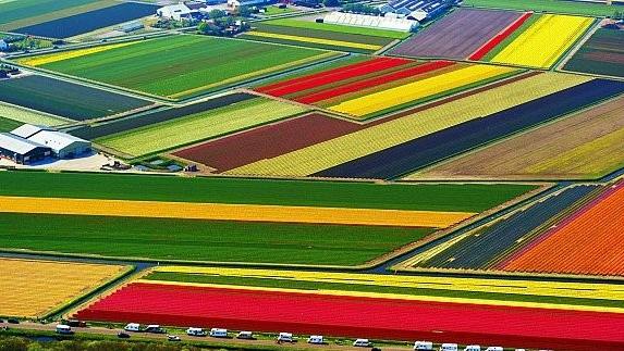 المساحة المزروعة بالزراعات الخريفية بلغت 227 ألف و 320 هكتارا بجهة فاس بولمان
