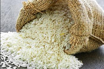 سلسلة الأرز بجهة الغرب الشراردة بني حسن.