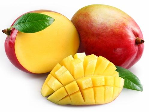 السنغال تطلق مشروعا لتحسين تنافسية فاكهة المانغا.