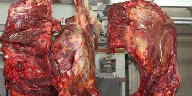 حجز أكثر من 900 كلغ من اللحوم الحمراء داخل مستودع للذبيحة السرية بفاس.