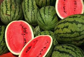 زراعة البطيخ الأحمر بزاكورة بين إكراهات ندرة الماء ووفرة الإنتاج
