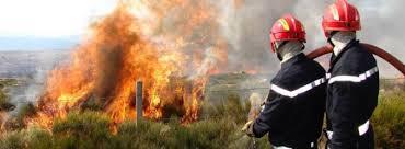 إخماد حريق غابوي تسبب في إتلاف 65 هكتارا بإقليم وزان.