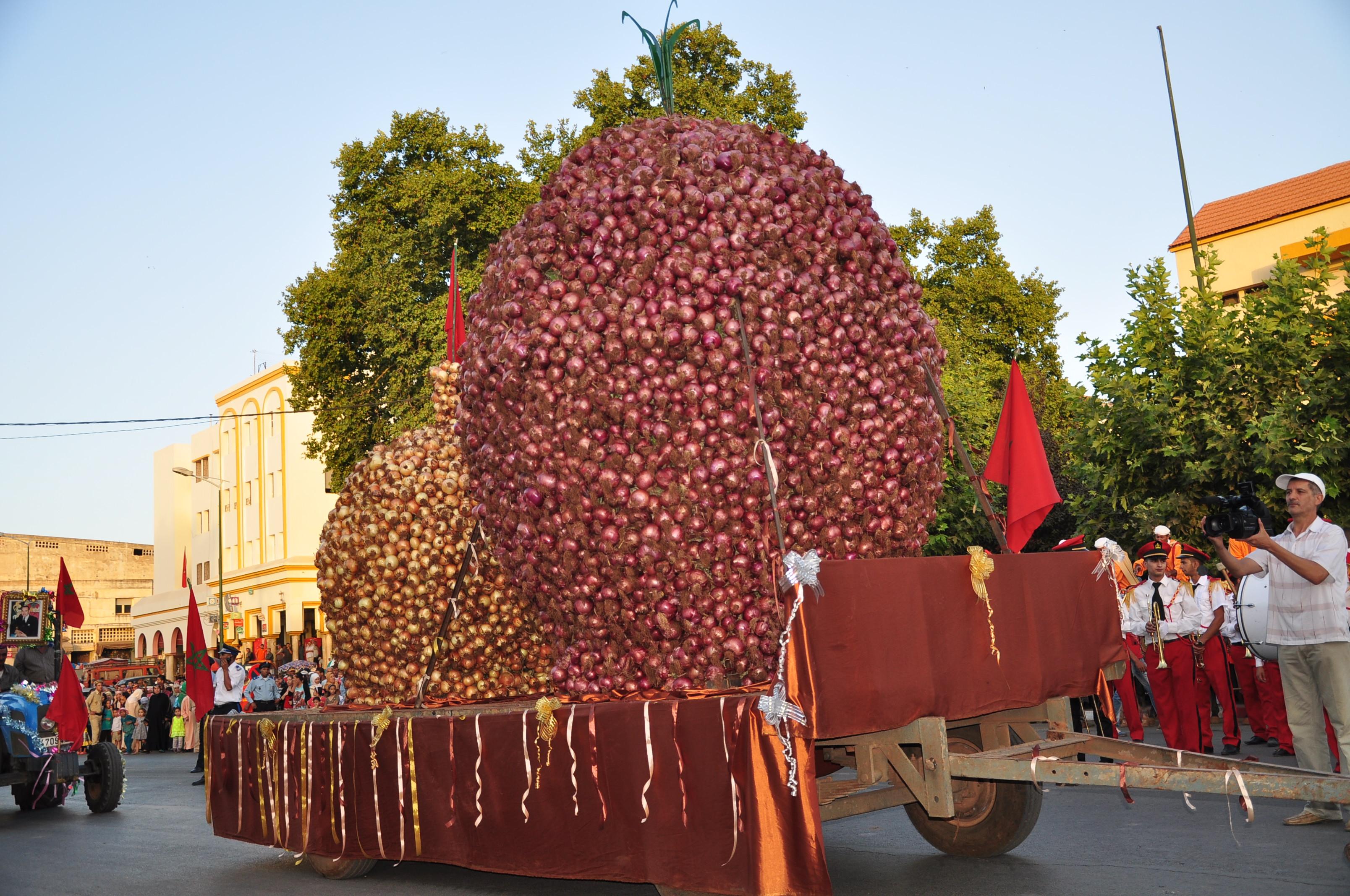 La Chambre d'Agriculture Meknès-Tafilalet organise la 2ème  édition du festival de l'oignon à EL HAJEB