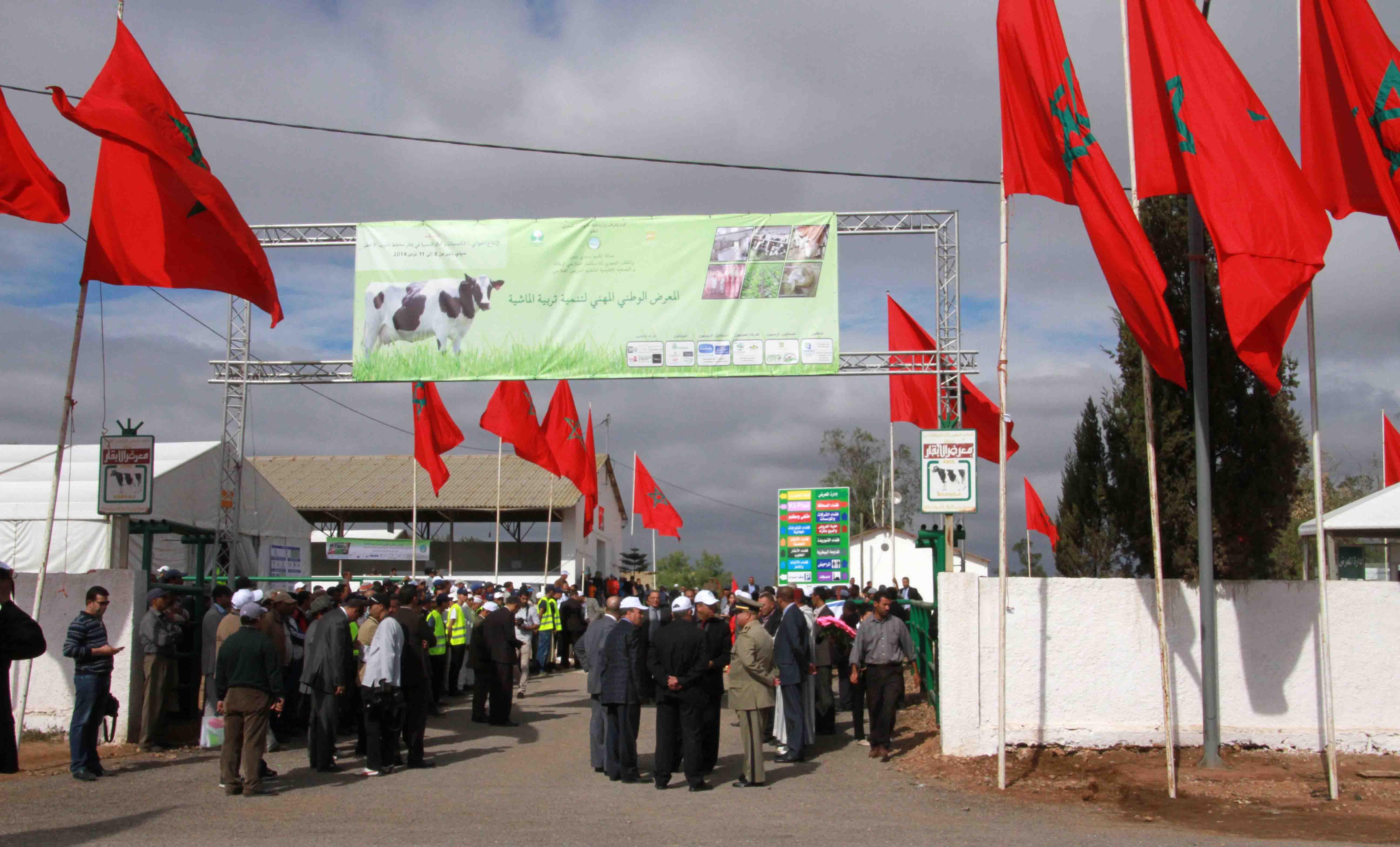المعرض الوطني المهني لتنمية تربية الماشية