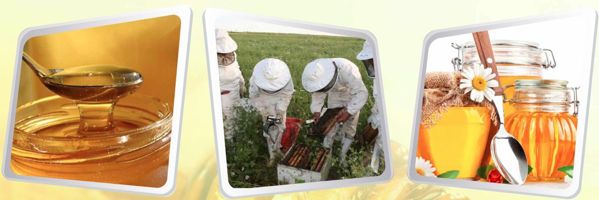 منتوج العسل بجهة الغرب شراردة بني حسن.